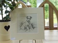Terrier sitting looking quizical, 1940's print by K F Barker - Ter B27b
